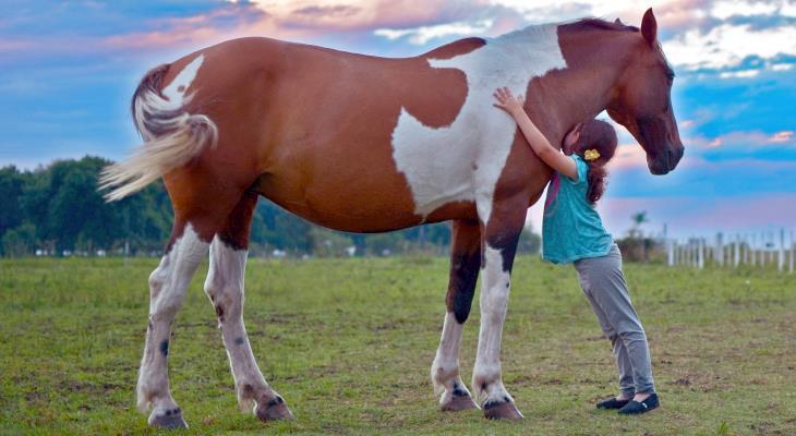 Reiterferien – Ein Traum für Mädchen