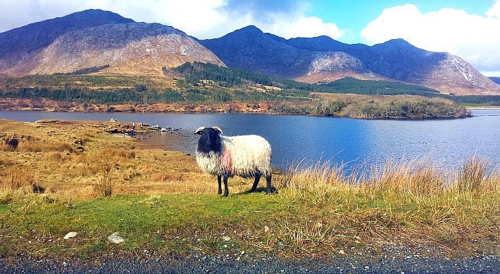 Connemara - The Wild Beauty of Ireland