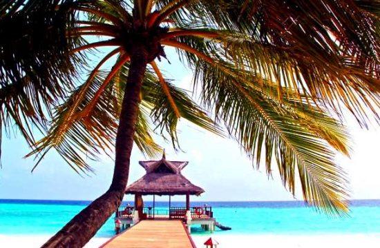 Zur besten Reisezeit auf die Malediven